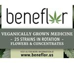 Beneflor Caregivers