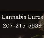 Cannabis Cures Caregiver